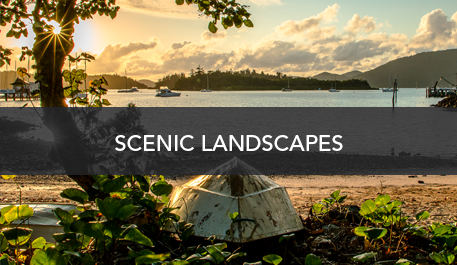 Scenic-Links Home | Wallpaper Prints
